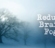 4-Steps-To-Reduce-Brain-Fog-And-Brain-Inflammation