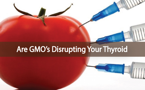 The-Impact-of-GMO's-on-Thyroid-Health