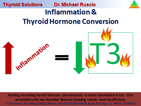 thyroid-conversion