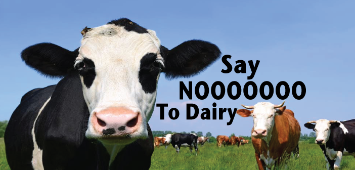 Should-Thyroid-Disease-Patients-Avoid-Dairy