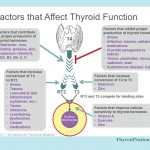 Factors-Affecting-Thyroid-Function-Meme-Thyroid-Nation