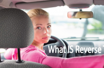 What-Is-Reverse-T3-2-Thyroid-Nation