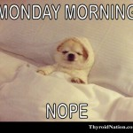 mondays-tired-thyroid-nation