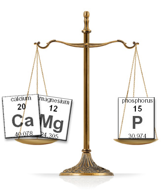 cal-mag-phos-scale