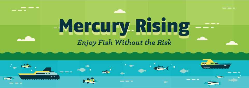 Edible-Fish-Infographic-Mercury-Is-An-Endocrine-Disruptor