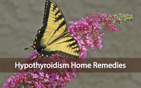 Hypothyroidism-Helpful-Home-Remedies-For-Better-Health