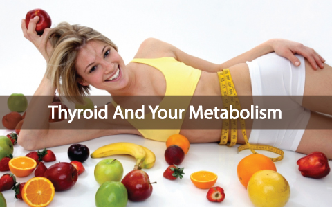How-Your-Metabolism-Works-With-Your-Thyroid