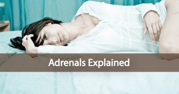 The-Adrenals-Adrenal-Fatigue-and-Remedies-Explained