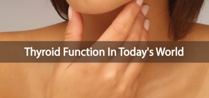 How-Well-Does-Your-Thyroid-Function-In-Today's-World