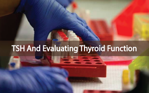 TSH-Is-Not-The-Sole-Method-To-Evaluate-Thyroid-Function