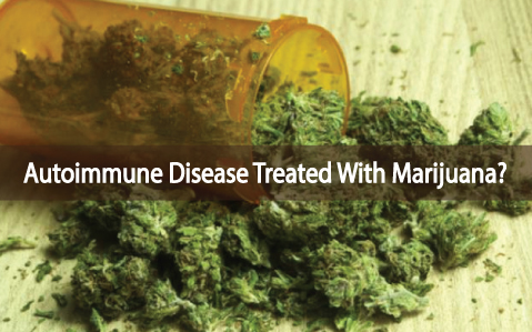 Medical-Marijuana-Can-Help-Heal-Autoimmune-Diseases