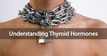 Understanding-he-Thyroid-Hormone-And-Your-Thyroid