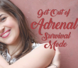 Fight-Or-Flight-Rescuing-Yourself-From-Adrenal-Fatigue