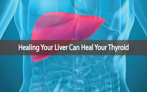 Healing-Your-Liver-Can-Heal-Your-Thyroid