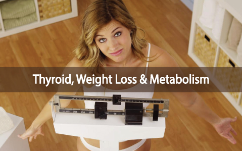 Metabolism-Weight-Loss-And-The-Thyroid-As-The-Master-Controller