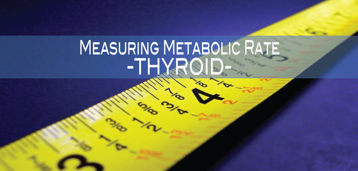 Measuring-Metabolic-Rate-for-Your-Thyroid