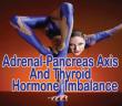 Thyroid-Hormone-Imbalance-And-Adrenal-Pancreas-Axis