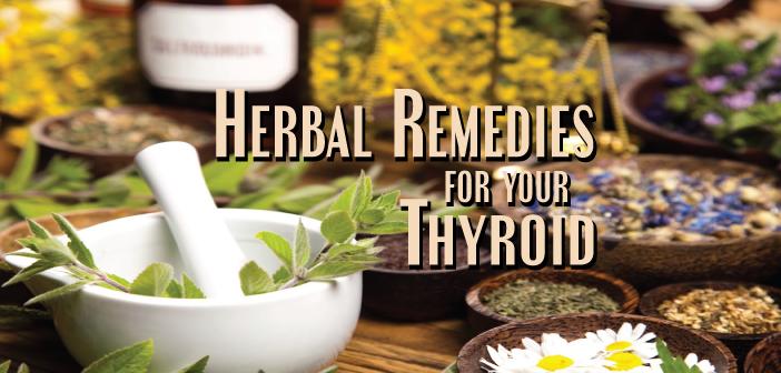 Ashwagandha-Benefits-Thyroid-Adrenals-And-Boosts-Metabolism