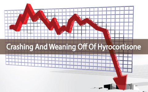 Crashing-And-Weaning-Off-Of-Hydrocortisone-For-Adrenals