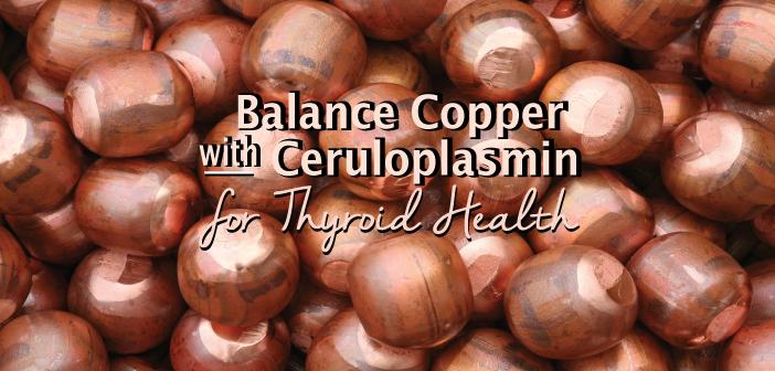 Balance-Copper-With-Ceruloplasmin-For-Thyroid-Health